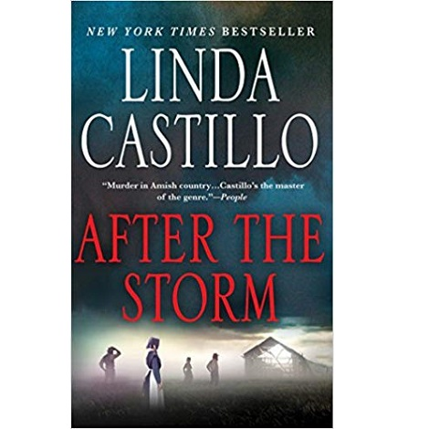 After the Storm by Linda Castillo
