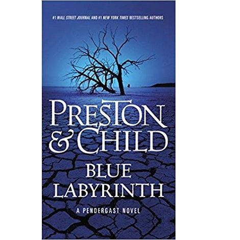Blue Labyrinth by Douglas Preston