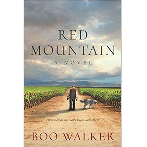 Red Mountain by Boo Walker