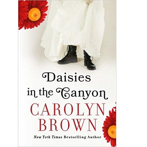 Daisies in the Canyon by Carolyn Brown