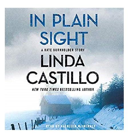 In Plain Sight by Linda Castillo