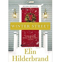 Winter Street by Elin Hilderbrnd