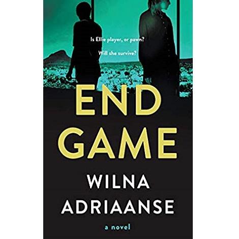 Endgame by Wilna Adriaanse