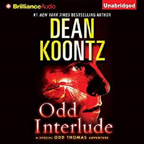 Odd Interlude by Koontz Dean