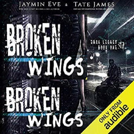 Broken Wings by Jaymin Eve