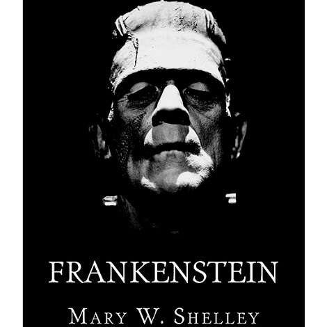 Frankenstein or Modern Prometheus by Mary W Shelley