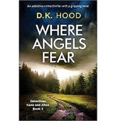Where Angels Fear by D. K. Hood