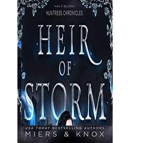 Heir of Storm by D.D. Miers