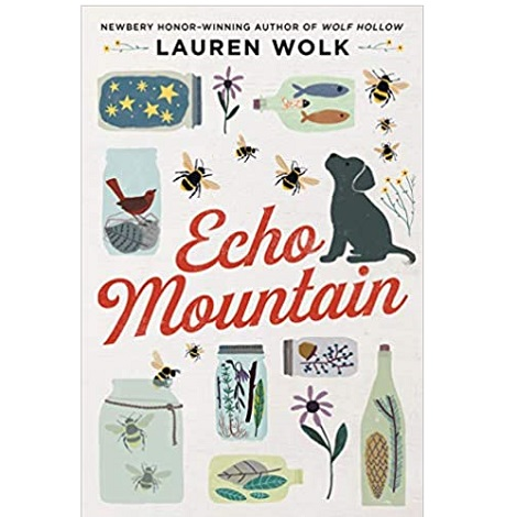 Echo Mountain by Lauren Wolk