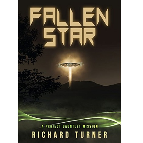 Fallen Star by Richard Turner