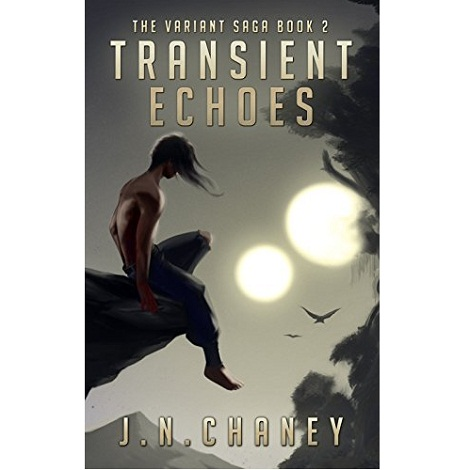Transient Echoes by J.N. Chaney