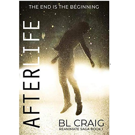 AfterLIfe by BL Craig